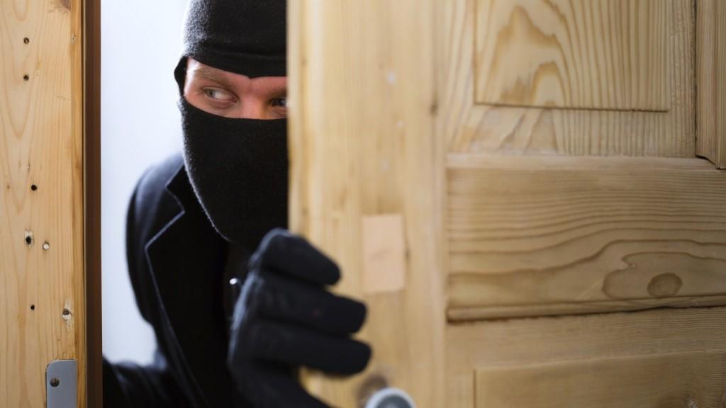 robo-viviendas-al-dia-en-verano-evitalo-con-esvision